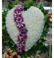 Hearts(1)