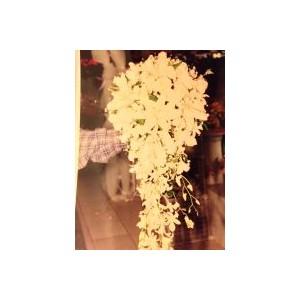 http://jasminesfloraldesign.com/img/p/166-235-thickbox.jpg
